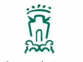 impuestos Ayuntamiento de Vitoria-Gasteiz