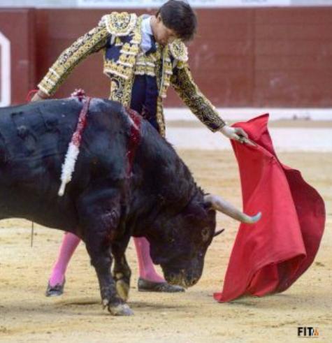 corridas de toros en Vitoria-Gasteiz