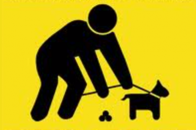 heces mapa cacas de perro Vitoria-Gasteiz