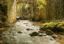 rio naturaleza monte turismo rural alava