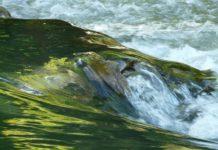 ríos alaveses