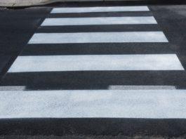 paso peatones cebra
