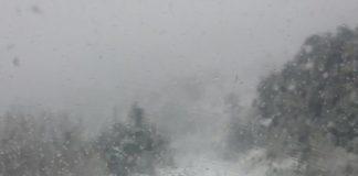 nieve alava