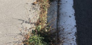 jardines bordillos