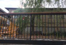 abandono jardines vitoria