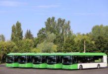 5 nuevos autobuses vitoria