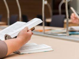 Los estudios de los alaveses (primarios, secundarios, fp y universitarios)