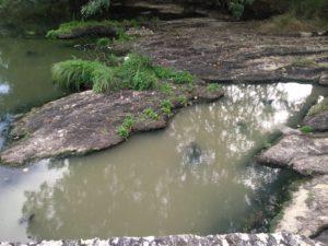 vertido río nauseabundo