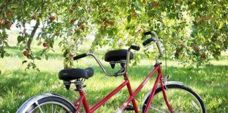tandem bicicleta
