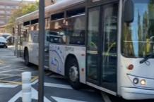 Urbanos de Vitoria... ¡Circulan por donde les sale! (fotos)